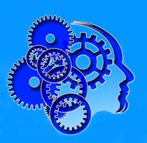 Brain Power Benefits of Exercise sm